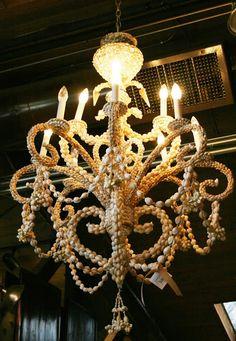 fabulous seashell chandelier