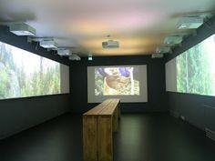 Prinsessa Life: Suomen luontokeskus Haltia vie virtuaaliretkelle luontoon
