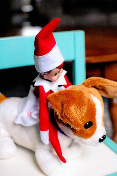 Elf on a Shelf-- riding stuffed puppy All Things Christmas, Christmas Holidays, Christmas Crafts, Christmas Decorations, Elf Magic, Elf On The Self, Naughty Elf, Buddy The Elf, Christmas Traditions