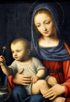 Bernardino Luini - The Madonna of the Carnation, 1515