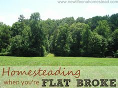 "Homesteading When You're Flat Broke / Phenomenal write up and great pointers! I don't ever plan on being ""flat broke"", but repaying school will always keep me in frugal mode. Homestead Farm, Homestead Gardens, Homestead Living, Farms Living, Homestead Survival, Survival Tools, Just In Case, Just For You, Future Farms"