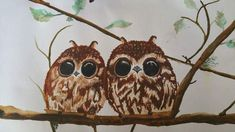 Owls! Owls, Bird, Animals, Animales, Animaux, Birds, Owl, Animal, Animais