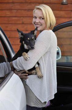 Katherine Heigl picks up her dog Flora       celebs     pets    #celebswithdogs #celebswholovedogs   https://biopop.com/