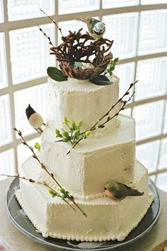 Birds and pussy willows on a tiered cake. How beautiful for a spring wedding/party