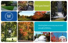 Print design: fundraising postcard for Wellesley College