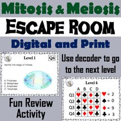 This breakout escape room is a fun way for students to test their knowledge of mitosis and meiosis.