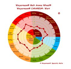 Weyermann® Malt Aroma Wheel® Carared® - Wort