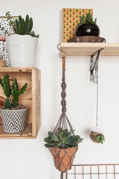 Hanging from shelf