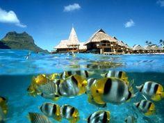 Spend a week in Bora Bora