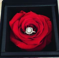Birthday Flowers Arrangements Red Roses Valentines Day Ideas For 2019 Roses Valentines Day, Valentine Day Gifts, Beautiful Diamond Rings, Dad Birthday Card, Gold Candles, Luxury Flowers, Surprise Gifts, Flower Boxes, Creative Gifts