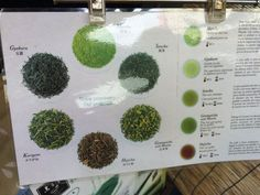 learning about the many kinds of hot green tea in japan in tsukiji's outer market