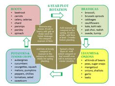 Benefits of Crop Rotation For Your Garden Crop Rotation, Celeriac, Grow Your Own Food, Fruit And Veg, Beetroot, Growing Vegetables, Pest Control, Compost, Vegetable Garden
