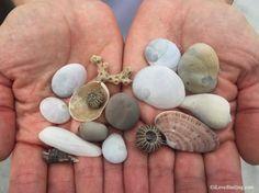 Buckets Of Beach Bling and SeaShells
