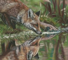 """'Water's Edge' by Emma Colbert. Unison soft pastel on Hahnemühle velour paper 18""""x16""""."""