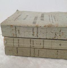 Trip of French books  fleaingfrance.com/fr/