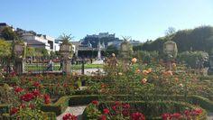 Oh, du schönes Salzburg! Frühlingsgefühle mitten im Herbst. #BC
