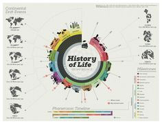 Data visualization & Infographics : History of Life Infographic Infographic Examples, Timeline Infographic, Infographics Design, Information Design, Information Graphics, Composition D'image, History Of Earth, Timeline Design, Graphic Design Tips