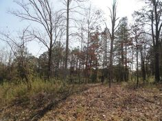 View listing details, photos and virtual tour of the Land for Sale at Chahyga Way, Loudon, TN at HomesAndLand.com.