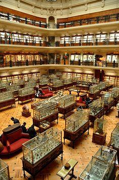 Museo GeoMinero, Madrid.
