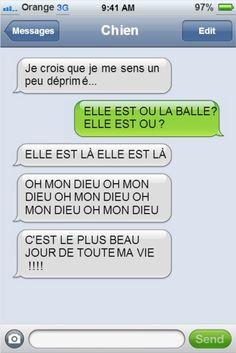 Si votre chien pouvait écrire des textos, il vous enverrait sûrement des messages comme ceux-là... C'est excellent ! Rage, Photo Humour, Friendzone, English Jokes, Troll Face, Old Memes, Messages, Learn French, Girls Be Like