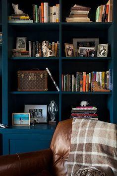 deep blue bookshelves