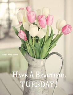Have a beautiful Tuesday! ♥