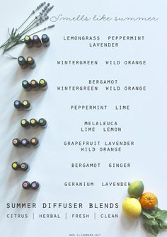 Citrus, mint and more- the perfect summer blends to diffuse in your home,