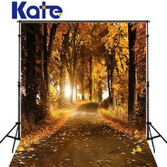 Find More Background Information about Background Falling Leaves Woods Photography Backdrops vinyl Photography Backdrop Autumn Scenic Background Fall Photography Kate,High Quality wooden manikin,China wood free offset printing paper Suppliers, Cheap backdrops com from Background Made in China on Aliexpress.com