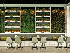 Vertical gardens are a great way to spruce up out door as well as indoor seating in restaurants and bars. They can be a budget friendly alternative to expensive renovations. Not to mention they cre…