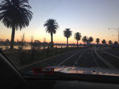 Albert Park lake side