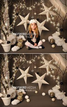 Winter Wonderland Digital Photography Backdrop for sale.