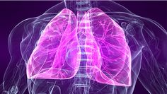 Iron supplementation decreases allergic inflammation in the lungs.