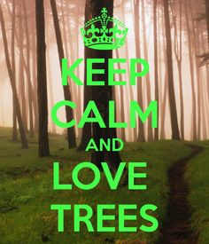 KEEP CALM AND LOVE TREES - KEEP CALM AND CARRY ON Image Generator