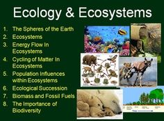 The Unit Package includes a complete lesson set for an Ecology unit on Sustainable Ecosystems.     Includes: - 5 weeks of teaching material - 8 Power Points totaling 170 slides - 2 Culminating Tasks/Projects - Video Worksheets - Teacher and student versions of each power point - Student notes in word   Lessons Included: The Spheres of the Earth,Ecosystems,Energy Flow In Ecosystems,Cycling of Matter In Ecosystems, Population Influences within Ecosystems,Ecological Succession,AND MORE