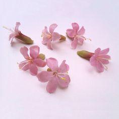 Saponaria flowers- Handmade in plastic. Stud Earrings, Plastic, Floral, Flowers, Handmade, Backgrounds, Hand Made, Stud Earring, Royal Icing Flowers