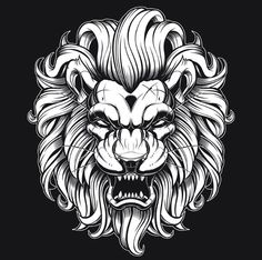 Lion - Jared Mirabile/Sweyda