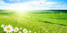 Гисметео Украина: погода на 10 июля – преимущественно жарко https://joinfo.ua/weather/1209621_Gismeteo-Ukraina-pogoda-10-iyulya.html