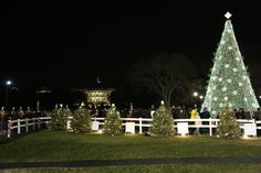 The National Christmas Tree in front of the White House: A Photo Essay: Washington D.C.
