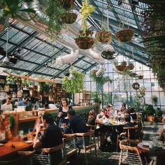 Urban Outfitters - Blog - Thursday Tip-Off: Decorating With Plants #restaurantdesign