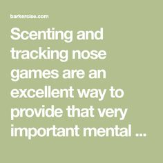 Scenting and tracking nose games are an excellent way to provide that very important mental enrichment and mind stimulation that dogs truly need to be calm, well behaved and happy. Here are 12 simple and fun scenting and tracking nose games to try.