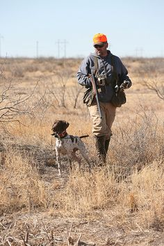 TX hunting Book Authors, Store Design, Bradley Mountain, Book Design, Hunting, Dogs, Pet Dogs, Dog, Design Shop