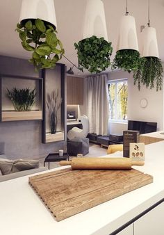 "Upside down herb ""garden"" in your kitchen"