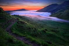 """""""Wilderness' Magic"""" by Florent Courty"""