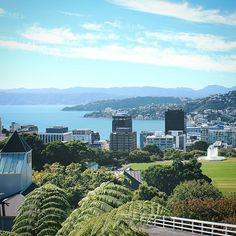 Wellington, New Zealand / see more at A Globe Well Travelled