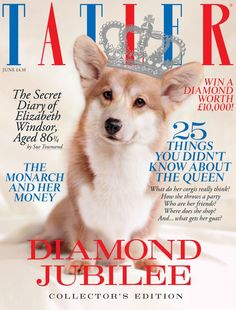 Mulberry loves the Tatler Jubilee Special Issue, featuring a very cute corgi!