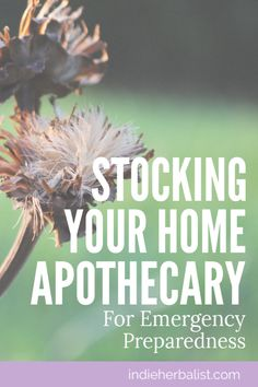Stocking a Home Apothecary for Emergency Preparedness  | indieherbalist
