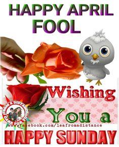 happy april fool april quotes april fools day funny happy april 1st
