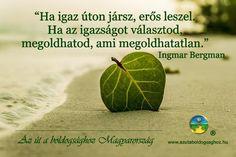 Ingmar Bergman idézete az igazságról. A kép forrása: Az Út a Boldogsághoz Magyarország