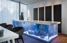 Criação de designer permite usar o fogão e até lavar a louça logo acima de onde os peixes nadam