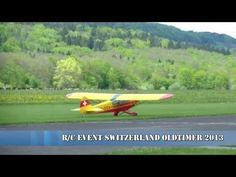 Very Big Super Piper Cub Switzerland Style. Cubs, Switzerland, Golf Courses, Big, Style, Antique Cars, Puppies, Bear Cubs, Tiger Cubs